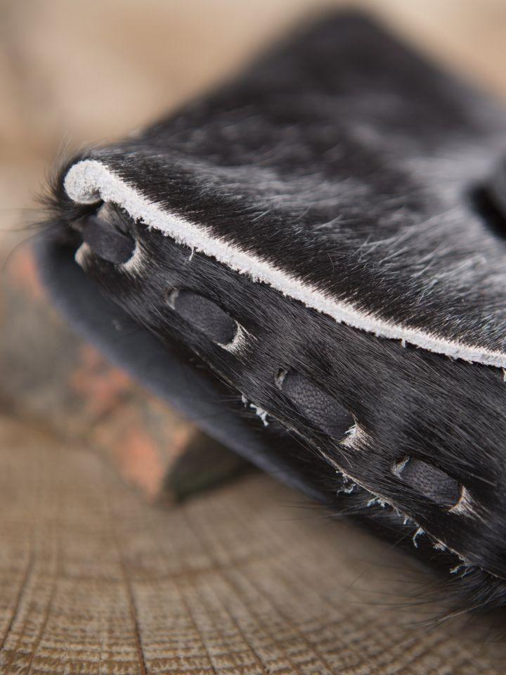 Gürteltasche aus Kuhfell schwarz 3