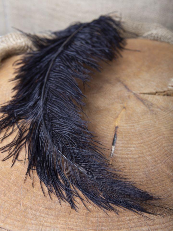 Straußenfeder 50-60 cm schwarz 6